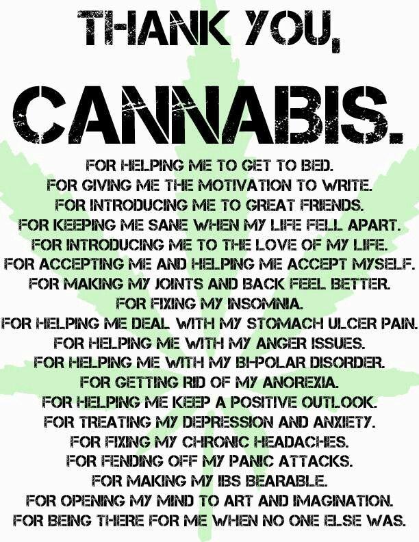 Thank you, cannabis!