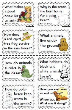 All about animals essential questions     @Alissa Fewell: Animal Adaptations, Animals Essential, Animal Groups Habitats, Animal Habitats, Questions, Alissa Fewell, Studies, Teaching Ss Science Health
