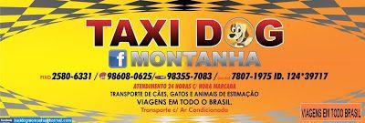 TAXI DOG MONTANHA TRANSPORTE DE ANIMAIS NO RIO DE JANEIRO: PRESTAMOS SERVIÇOS DE TAXI DOG !!!