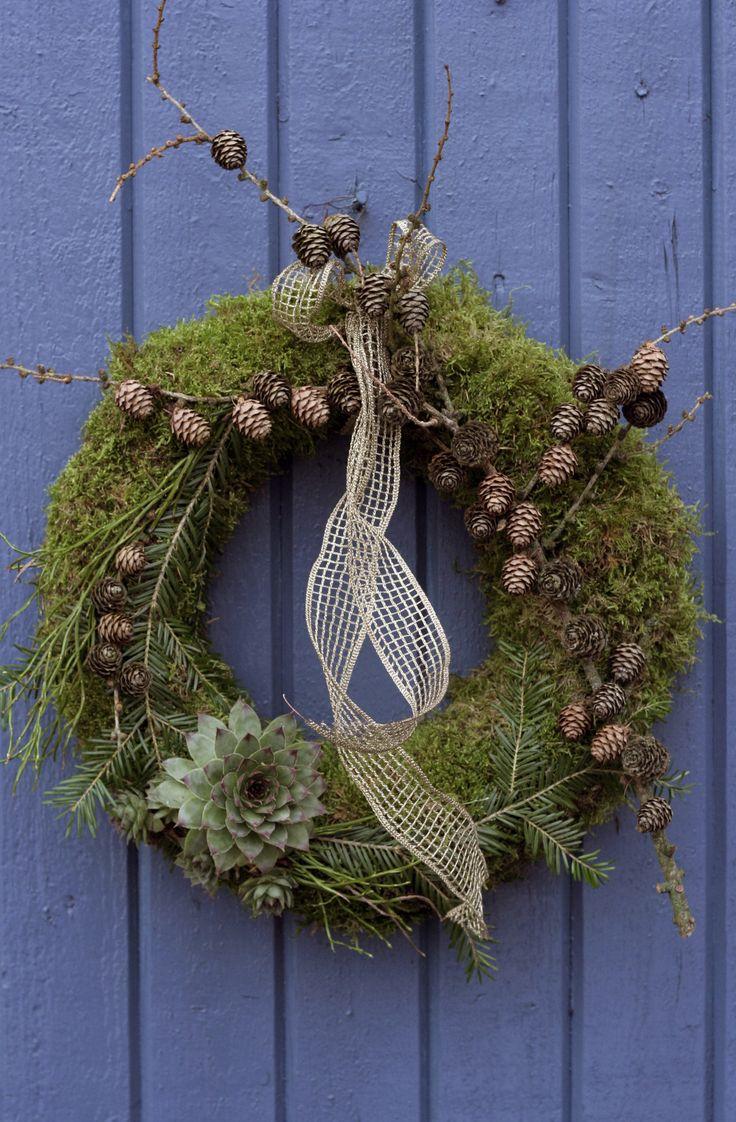 Inspirerande julkransar på Trädgårdsbloggen!