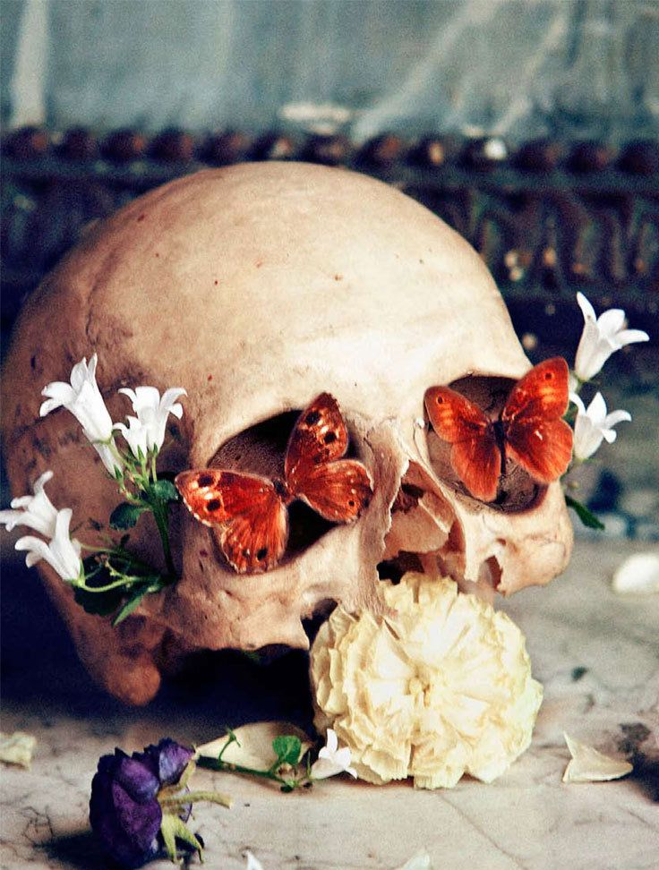 Nimue Smits, Inspiration, Vanity, Butterflies, Flower Skull, Beautiful, Skull Art, Eye, China