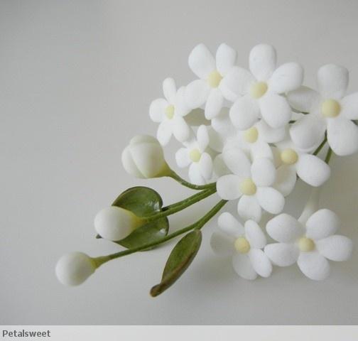 194 best flores pasta aucar images on pinterest little filler flowers mightylinksfo