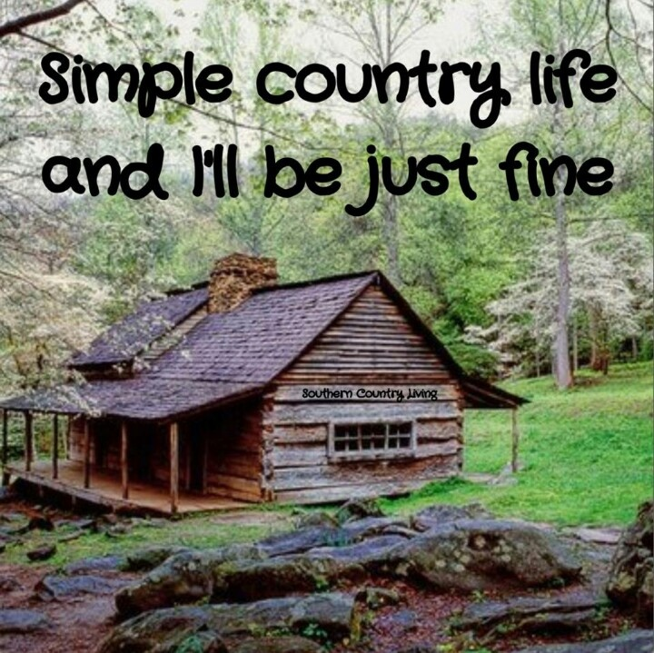 67 best images about shacks on pinterest winter log for Simple country log homes