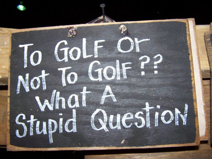 To GOLF or not to golf, what a stupid question Great Fathers day gift