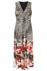 David Emanuel Floral Border Animal Print Maxi Dress - Bonmarche