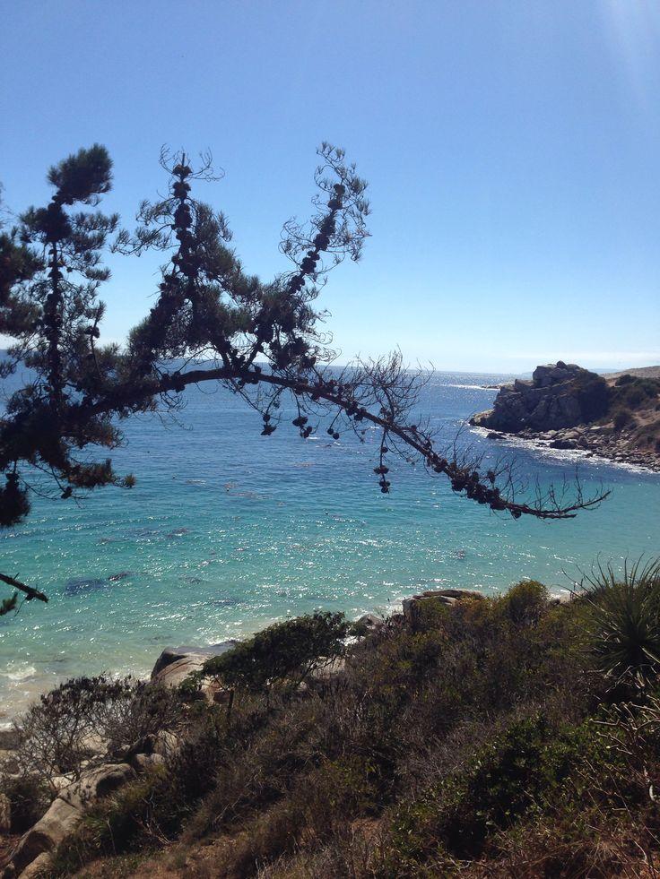Beautiful beaches of Algarrobo, Chile