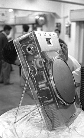Giant skeleton of the TR-610 transistor radio (125 times larger than its actual size)