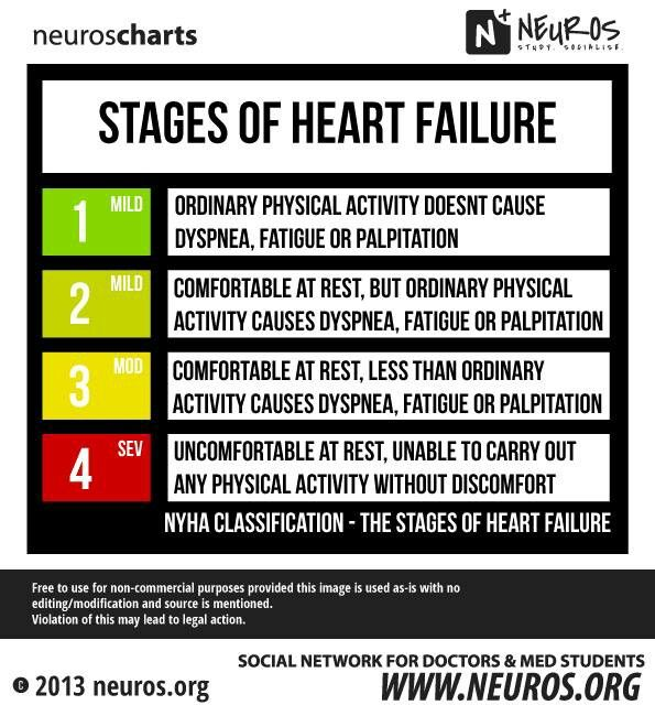 Stages of heart failure                                                                                                                                                                                 More