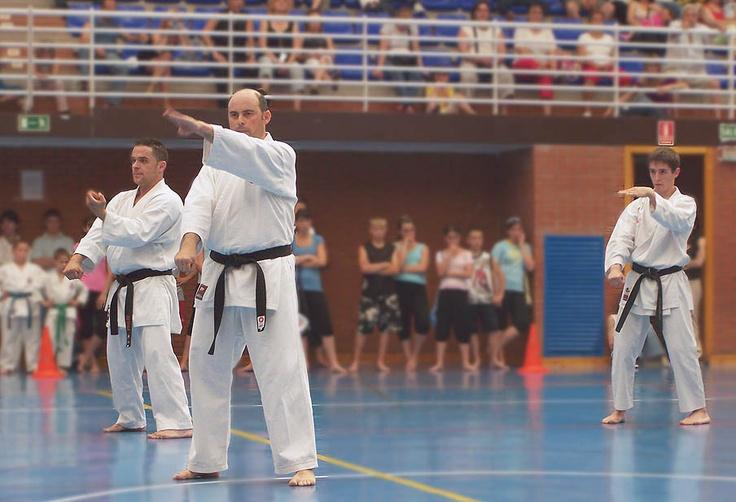 20 Aniversario Karate Humanes 20.06.08 (1)
