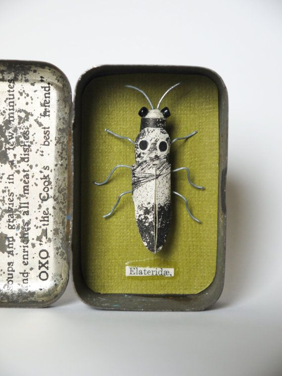 Elateridae Materials used: wire, book pages, reclaimed beads, a vintage food tin. A