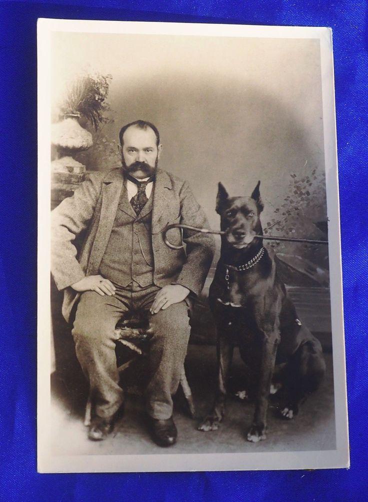 Antique photo HUGE IMPRESSIVE GREAT DANE DOG HOLDS CANE man w BIG mustache!   eBay