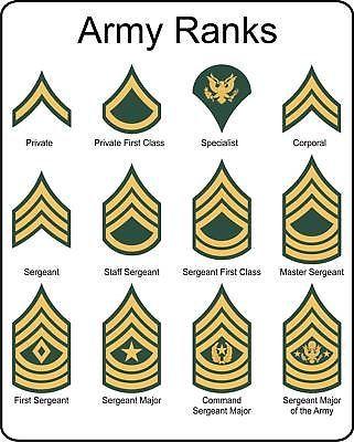 Military U.S. Army Rank insignia metal sign