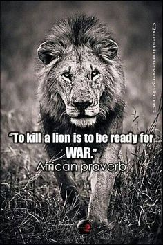 african proverbs - Google Search