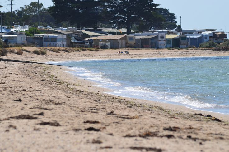 Indented Head in Victoria