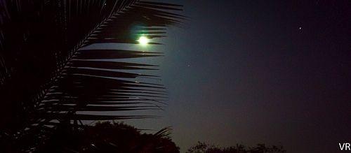 Chennai Moon