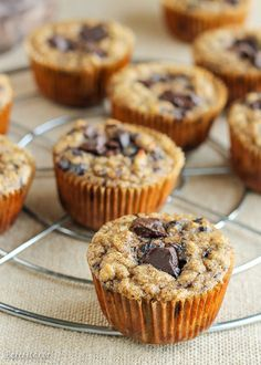 These Paleo Almond Butter Chocolate Chip Banana Muffins taste just like your…