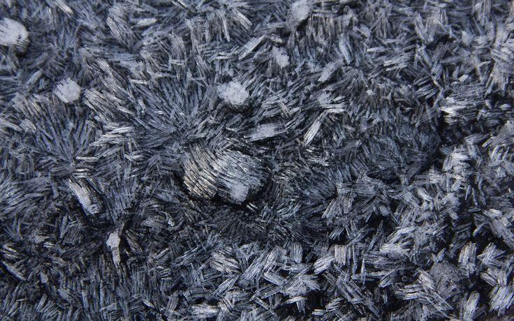 Skrivebordsbakgrunn: Vinterbilde av rim / Winter motive in frost