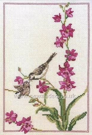 Buy+Floral+Feed+Time+Cross+Stitch+Kit+Online+at+www.sewandso.co.uk