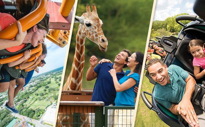 Busch Gardens Tampa Fl Military Discount Tickets