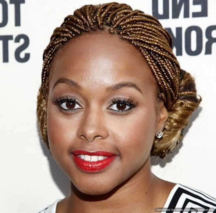Hairstyles Using Braiding Hair : African American Hair Braiding Styles Micro Braid Hairstyles Black ...