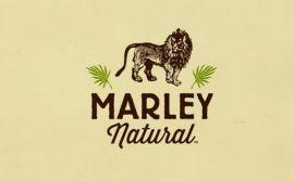 Primeira marca global de maconha, Marley Natural vai levar o nome do cantor jamaicano (Crédito: divulgação)