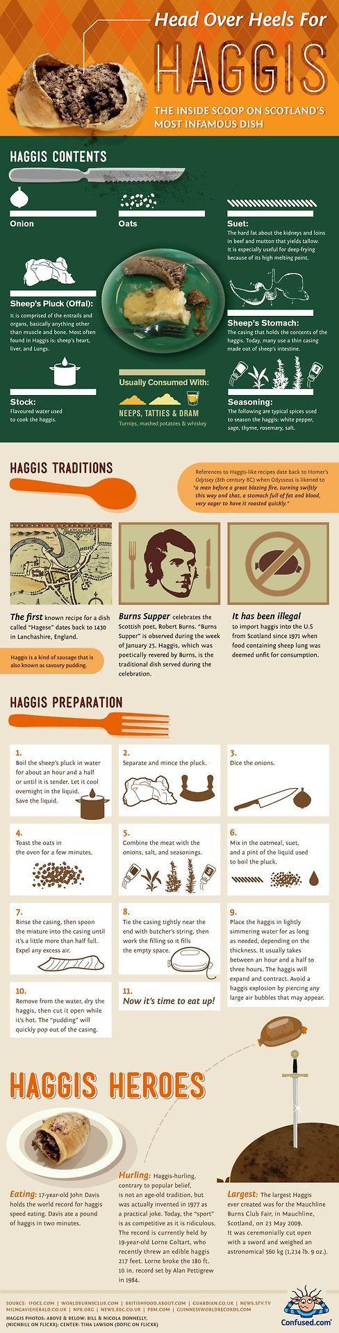 Haggis, infografia
