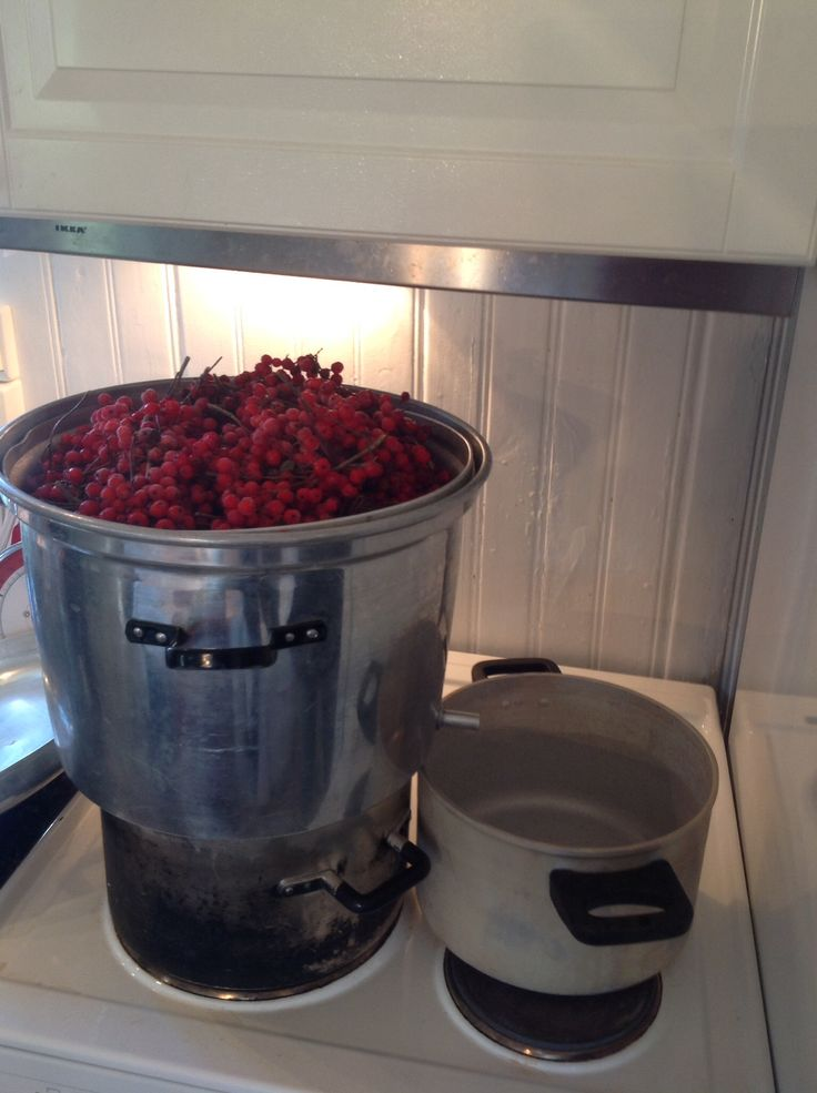 We made juice from Rowan berries and apples today.   The Rowan berries had to be frozen, otherwise the result wouldn't be good.