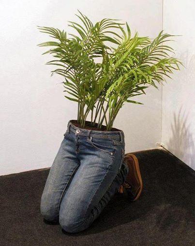 Reciclado: Rellenar uno jeans viejos de cemento y acabarlos de llenar con tierra, obtienes una hermosa maceta,novedosa forma de reciclar
