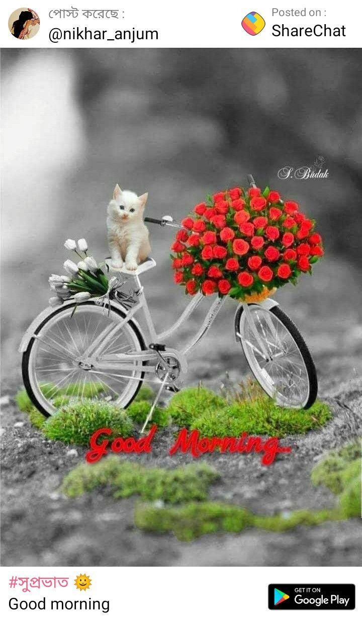 Pin By Subrata Bhaduri On Sharechat Good Morning Images Morning