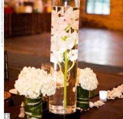 Orchidées dans un vase haut