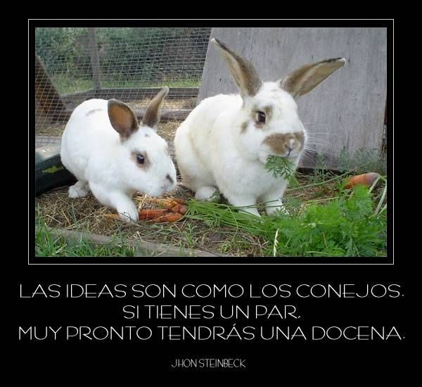 Otra cita sobre la generación de ideas #ideas