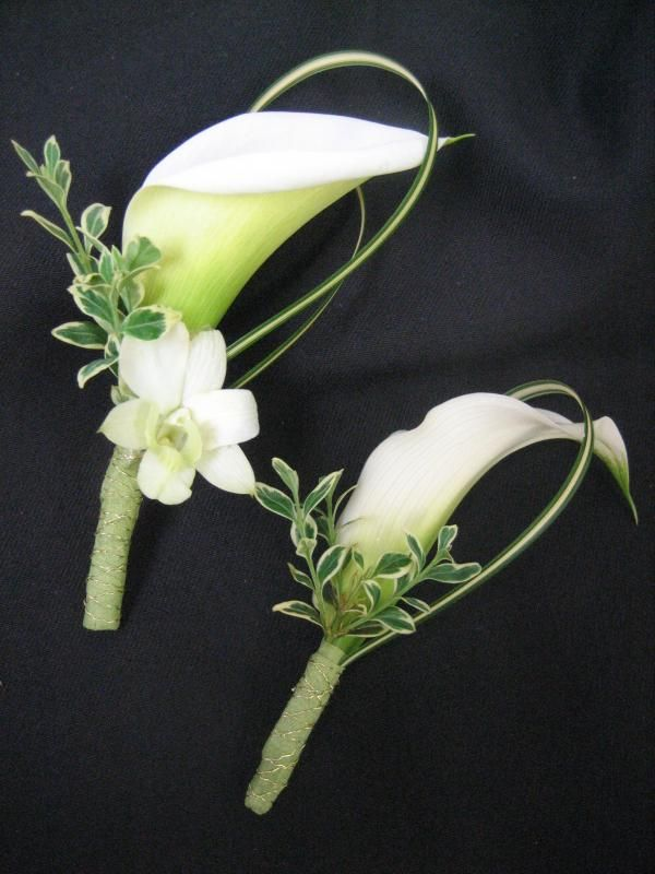 Bouts: single cala, varigated grass & greens. Stems wrapped in choice of color. All could have orchid, or just the groom.