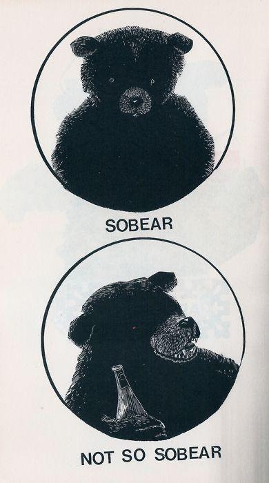 : Sleep Beautiful, Funny Things, Bears, Fun Stuff, Giggles, Random, Sobear, Hilarious, Animal