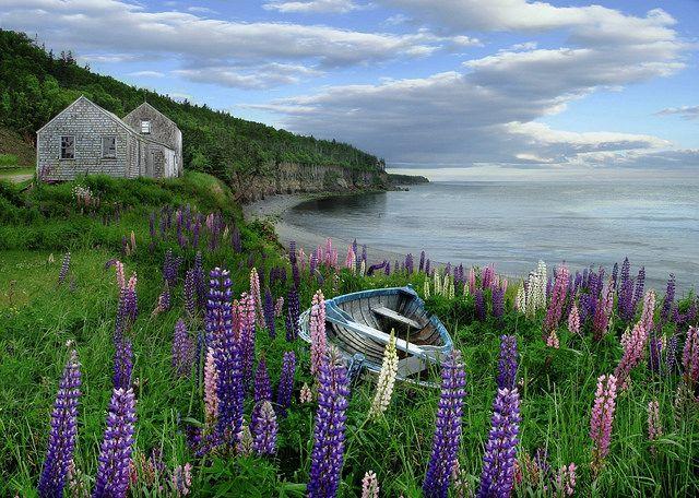 Halls Harbour, Nova Scotia