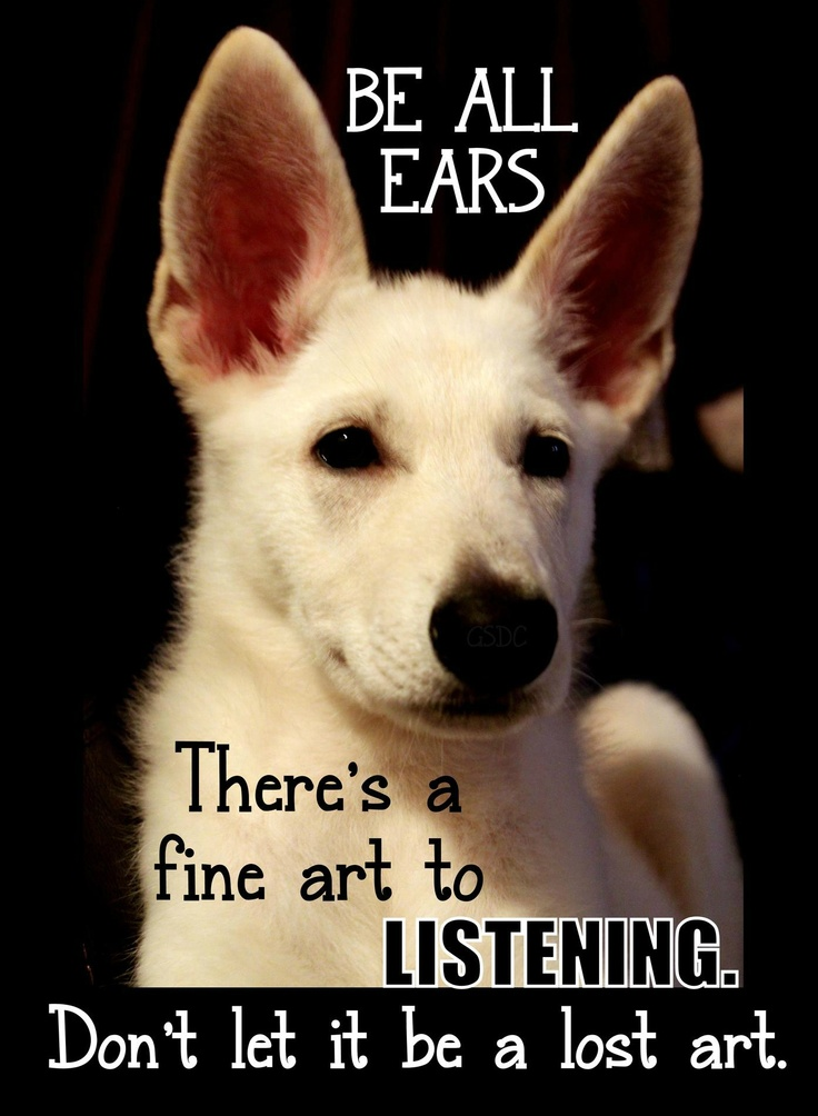 Listen More Talk Less | the listner | Pinterest