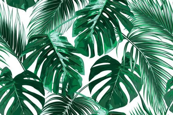Removable Wallpaper Mural Peel Stick Tropical Palm Leaves In 2020 Tropical Wallpaper Aesthetic Desktop Wallpaper Leaf Wallpaper