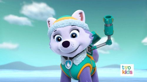 Paw Patrol Everest And Skye Fanfiction