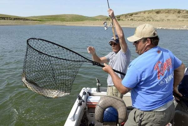 31 best fishing in south dakota images on pinterest for Missouri out of state fishing license