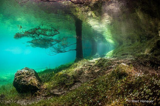 Chaque printemps, ce parc en Autriche disparaît sous l'eau...Ces photos complètement surréalistes vont vous faire rêver !