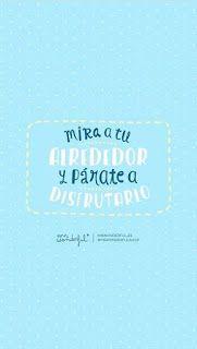 Mr-wonderful-mira-a-tu-alrededor