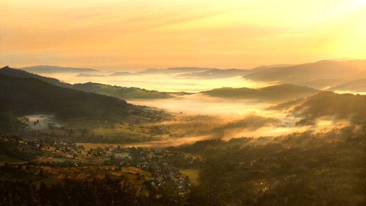 Golden mist by Simon Pytel on 500px