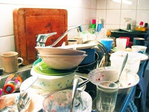 Leaving dirty dishes in the sink can attract all sorts of insects