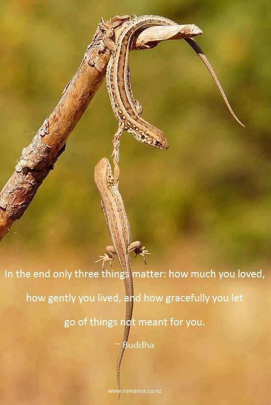 In the end only three things matter: how much you loved, how gently you lived, and how gracefully you let go of things not meant for you. ~ Buddha ~ Relationship quotes