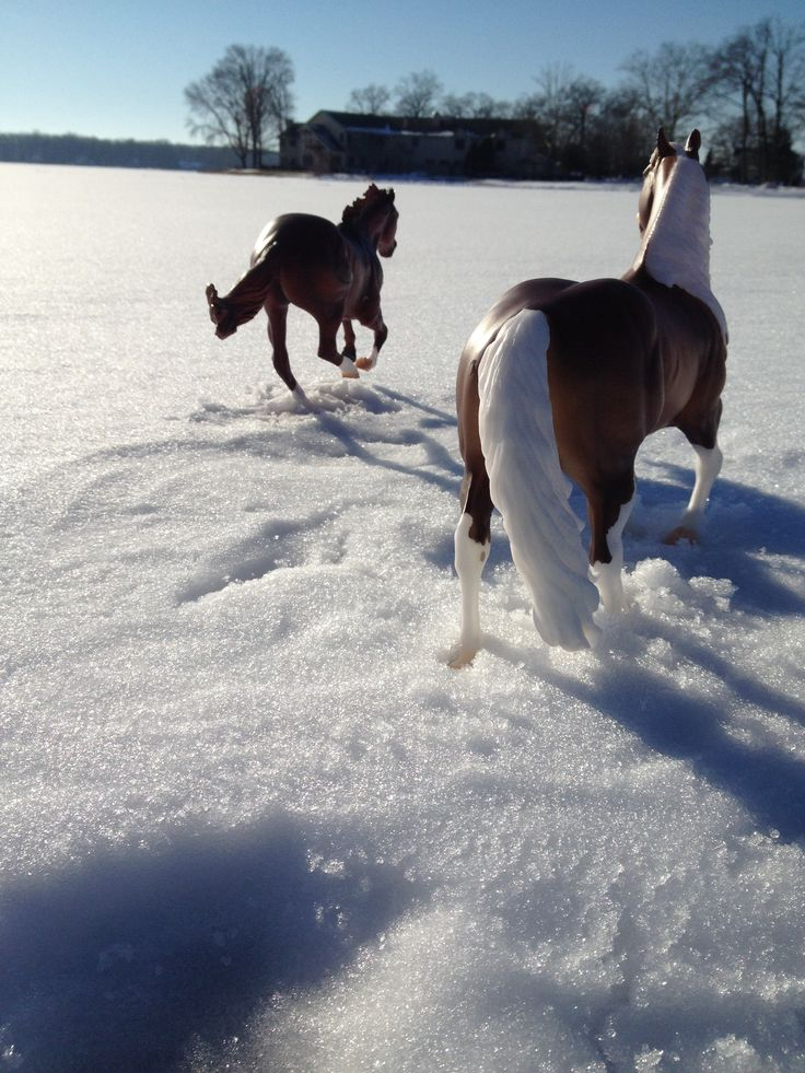 Breyer horse photography on the frozen lake:)  //Wow, I had to look twice.  I thought they were real EL//