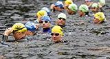 Anmälda simmare 2014 | Vansbrosimningen