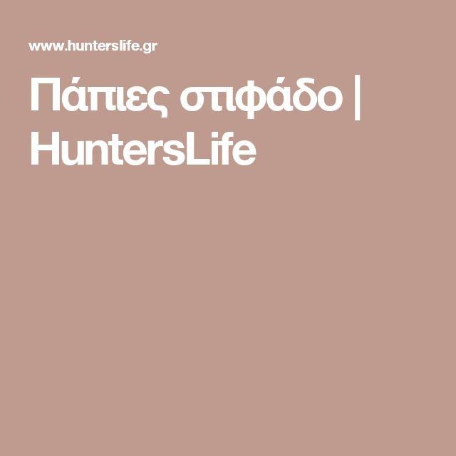 Πάπιες στιφάδο | HuntersLife