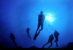 Diving e snorkeling in #Sardegna, un paradiso sommerso.