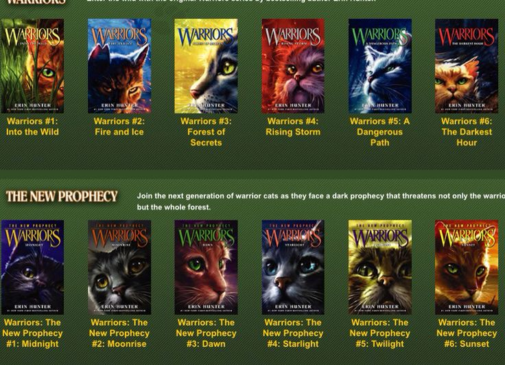 Warrior Cat Arcs In Order