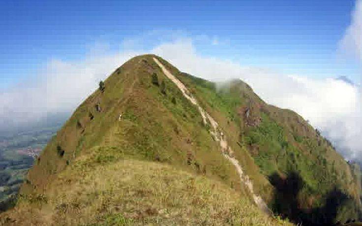 Gunung Andong adalah gunungi di Kabupaten Magelang, Jawa Tengah.Gunung Andong terletak di antara Ngablak dan Tlogorjo, Grabag dan berketinggian sekitar 1.463 mdpl