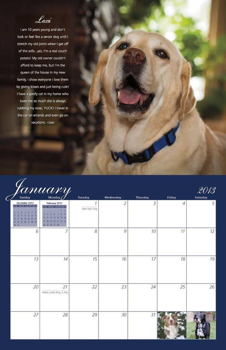Calendar Dogs : Best dog rescue calendars images on pinterest